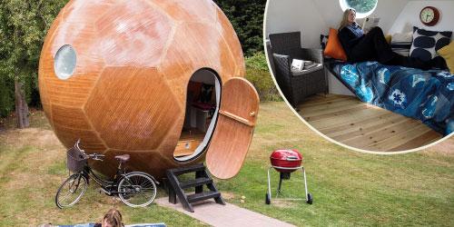 Conker living space inside