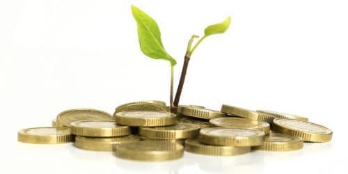 money with plant growing
